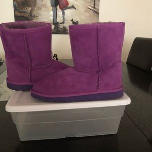 Beautiful Purple Uggs